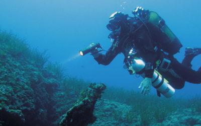 01. Tauchen im Meeresschutzgebiet