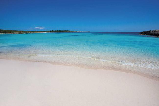 Playa Son Parc - Villas Etnia
