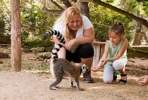 Kommen Sie den Tieren auf Menorca ganz nah
